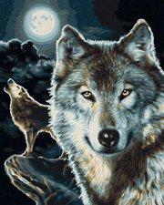 Schipper Malen nach Zahlen Wölfe