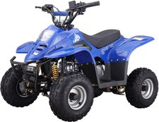 Luxxon Kinderquad Youngster 50 ccm
